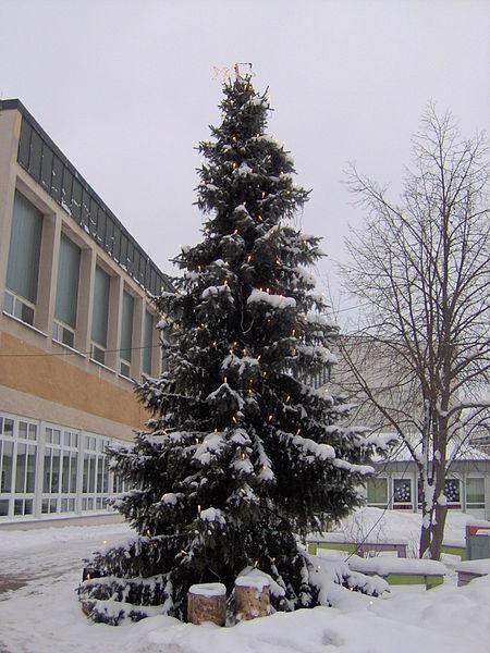Weihnachtsbaum Plößberg