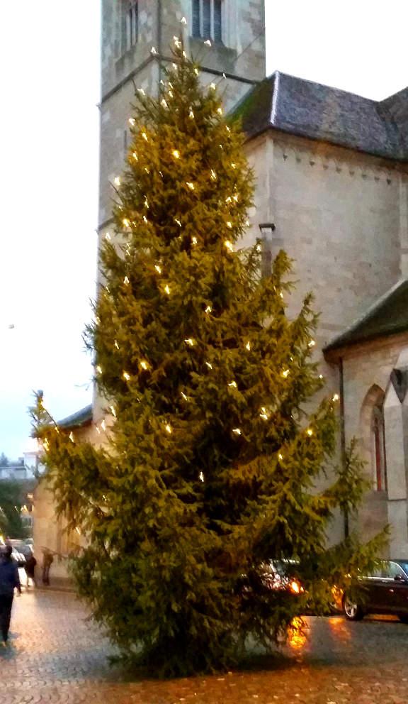 weihnachtsbaum-zuerich-20141218_163548s